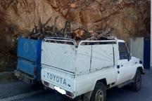 2 محموله چوب قاچاق در مهاباد توقیف شد