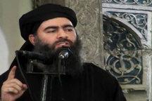 حتی اگر ابوبکر بغدادی زنده باشد تأثیری بر روند جنگ ندارد