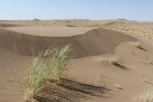 80 هکتار عرصه های منابع طبیعی بجستان در وضعیت بحرانی
