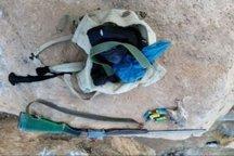 دستگیری متخلف شکار غیر مجاز پرنده در دلفان