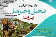 نخستین رویداد کارآفرینی نخل خرما دربوشهر گشایش یافت