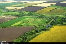 110 مورد تغییر غیرمجاز کاربری زمینهای کشاورزی شناسایی شد