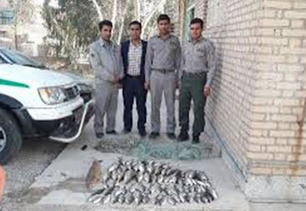9 متخلف صید غیرمجاز در پلدختر دستگیر شد