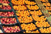 توزیع میوه تنظیم بازار در خراسان رضوی آغاز شد