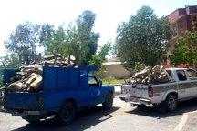 سه تن چوب جنگلی قاچاق در جیرفت کشف شد