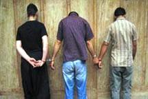 3 سارق حرفه ای منزل در  پیرانشهر دستگیر شدند
