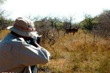 دستگیری شکارچی متخلف در سردشت