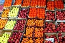 توزیع میوه ارزان در 80 نقطه از استان گیلان
