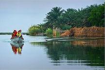 برنامه مدیریت جامع تالاب حرای رود شور، شیرین میناب تصویب شد