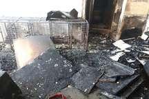 آتش سوزی در یک مجموعه اقامتی در مشهد