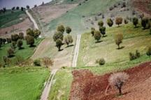 208میلیارد ریال صرف توسعه منابع طبیعی استان بوشهر شد