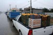 پرداخت مطالبات باغداران مازندران پیش از نوروز   خرید پرتقال درجه سه از سر گرفته شد