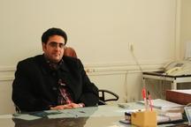 ذبح بیش از 31 هزار راس دام در کشتارگاه های زنجان طی 6 ماهه امسال