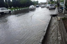 بارندگی ۱۵ شهرستان خراسان رضوی را دربرگرفته است
