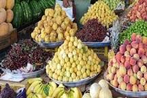 افزایش قیمت میوه در بیجار متناسب با جیب مردم نیست