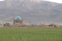 ریزگردها در کمین زنجان، عزم همگانی برای نجات چمن سلطانیه