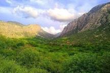 70 هکتار از اراضی ملی در مهاباد رفع تصرف شد