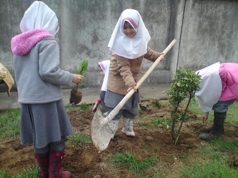روز درختکاری، بهانهای برای پاسداشت حقوق شهروندی