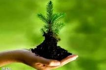 ضرورت ایجاد اقتصاد سبز در جامعه