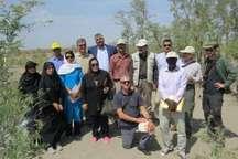 بازدید کارشناسان فائو و 5 کشور جهان از اجرای طرح جف در ریگان