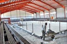 700میلیارد ریال اعتبار به پروژه های ورزشی بوشهر اختصاص یافت
