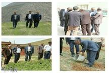 کاشت گل محمدی در استان لرستان