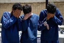 اعضای باند سارقان حرفه ای در طبس دستگیر شدند