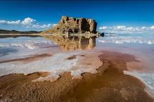 تن بیرمق دریاچه ارومیه مدیون ستاد احیاست
