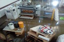 صاحبان صنایع سیلزده گلستان در انتظار دریافت تسهیلات هستند
