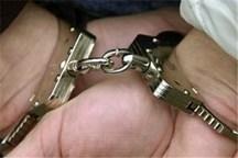 دستگیری سارق حرفه ای با 20 فقره سرقت منزل در اندیمشک