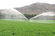 50 میلیارد ریال برای تجهیز اراضی کشاورزی سمنان به سامانه نوین آبیاری صرف می شود