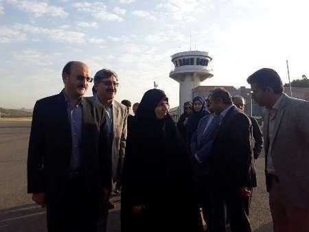رئیس سازمان میراث فرهنگی کشور به کردستان سفر کرد