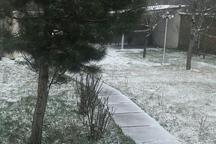برف و سرما ساکنان اردبیل را غافلگیر کرد