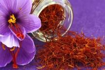 کاهش نرخ پایه صادراتی زعفران برای رونق صادرات آن ضروری است