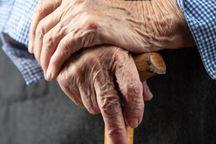 ۱۰.۲ درصد جمعیت لرستان سالمند هستند
