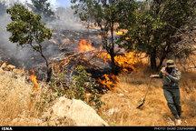 139 هکتار از مراتع همدان در آتش سوخت  وقوع آتشسوزی در یک باغ شخصی در درهمرادبیگ
