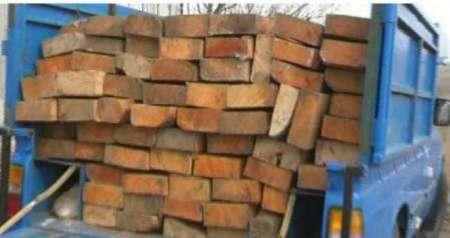 توقیف 99 اصله چوب و الوار قاچاق در نیر