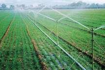 اجرای طرح آبیاری تحت فشار در 20 حلقه چاه کشاورزی سبزوار