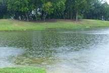 بارش 35 میلی متر باران در لرستان