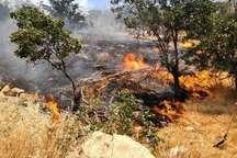 50 هکتار از پارک ملی کرخه در آتش سوخت