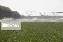 تجهیز ۳۴ درصد از اراضی کشاورزی ملایر به سیستم آبیارینوین