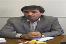 برگزاری انتخابات در یک هزار و 700 شعبه در استان اردبیل