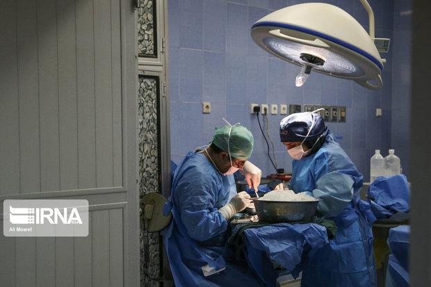 ۲۵ هزار بیمار درصف دریافت عضو هستند