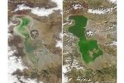 دریاچه ارومیه دوباره جان گرفت+ عکس