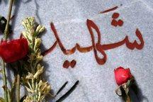 شهید احمدی طیفکانی: طرفدار آرمان های انقلابی باشید