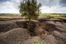 سالانه 400 هزار هکتار اراضی کشور با فرسایش خاک نابود می شود