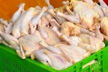 کیفیت مرغ با انجماد در فریزر خانگی کاهش می یابد