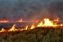آتشسوزی در اراضی روستای کلگه باغملک  علت حادثه در دست بررسی است