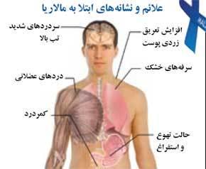 حذف بیماری مالاریا ازاولویتهای وزارت بهداشت است