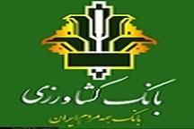 پرداخت وام ازدواج از سوی بانک کشاورزی استان زنجان
